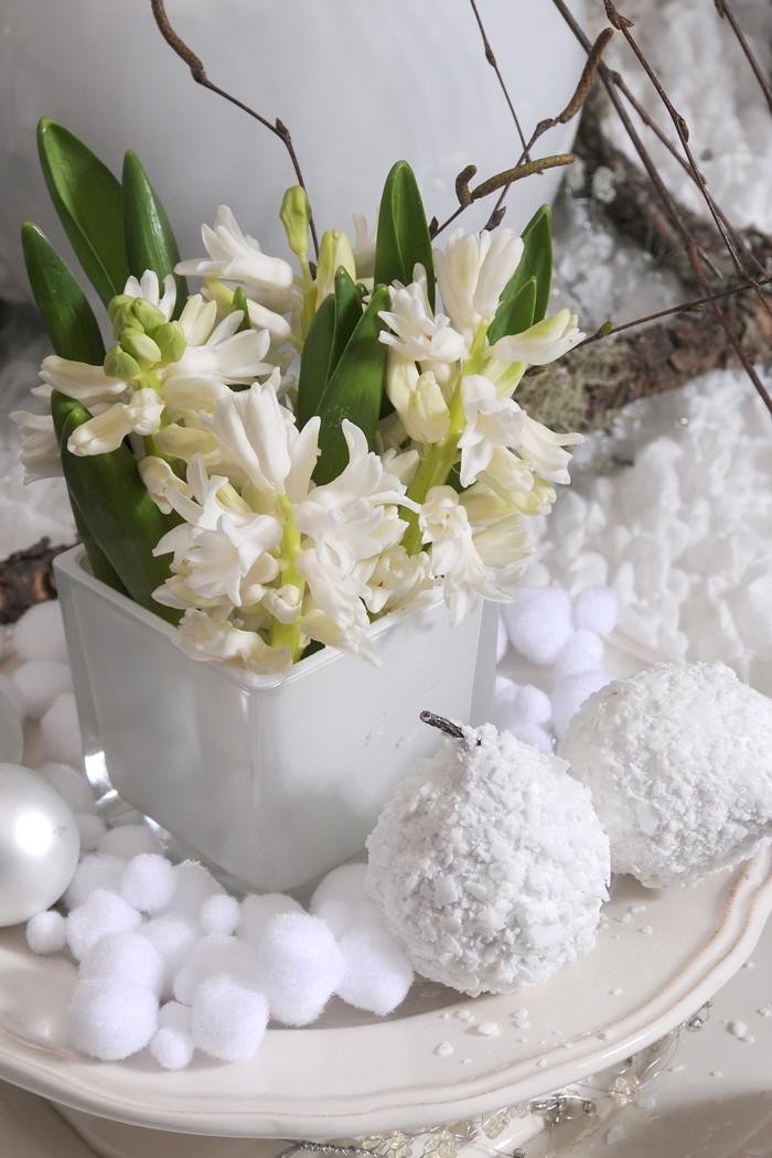 Vita hyacinter är vintrigt. Bomull förstärker känslan.