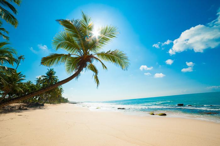 Orörd strand på Sri Lanka. Foto: Shutterstock