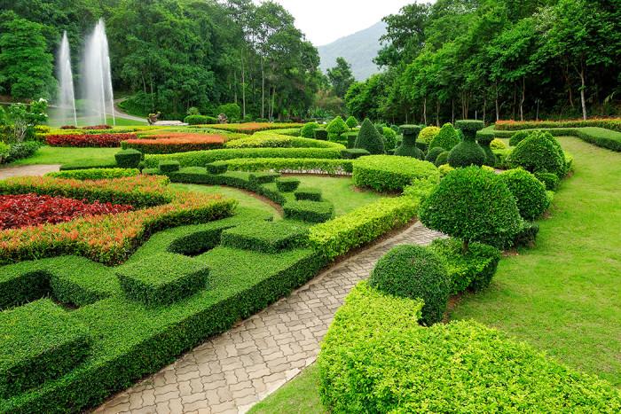 Formklippt trädgård. Foto: Shutterstock