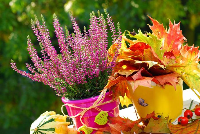 Ljung och gulnade löv blir ett fint blickfång på balkongen. Foto: Shutterstock
