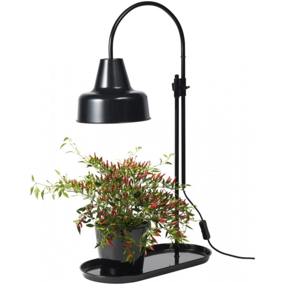 5 växtlampor + tips och råd | Drömhem & Trädgård