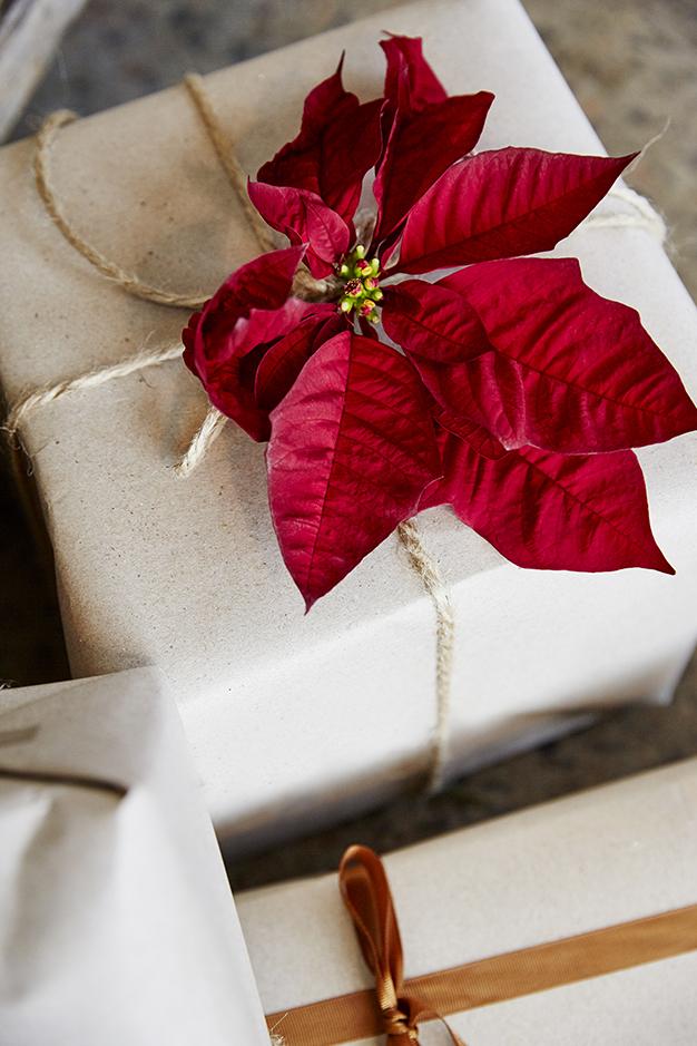 julstjarna-dekorera-snittblomma2