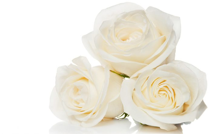 blommors betydelse rosor