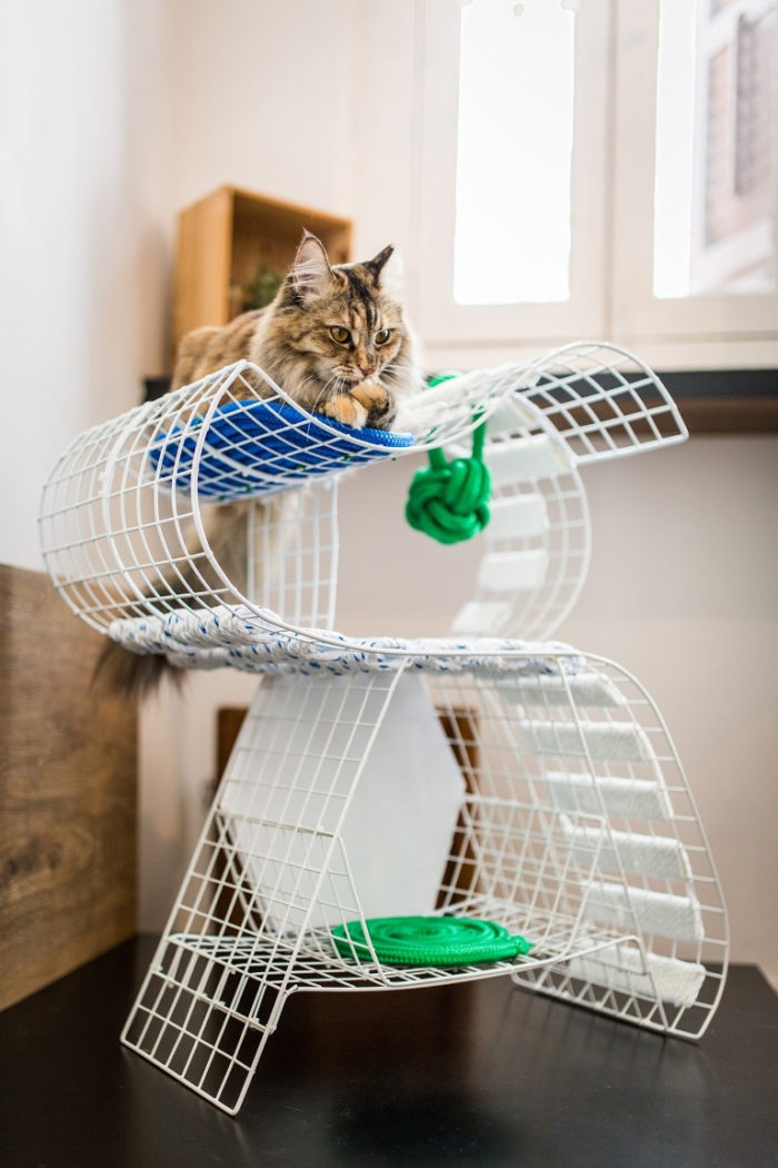 kattmöbler