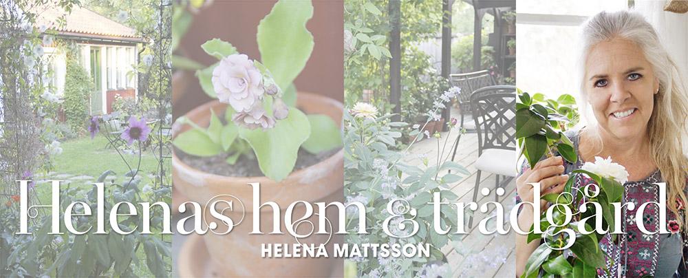 bild på Helena Mattsson
