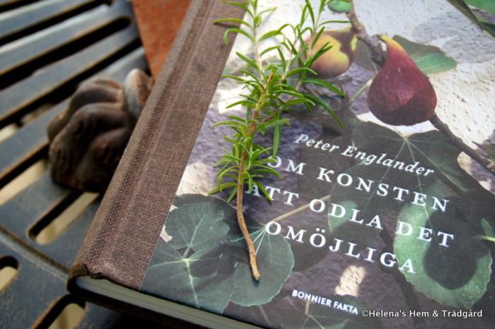 Peter Englander 'Om konsten att odla det omöjliga'